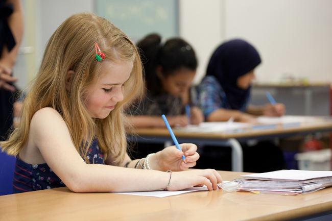 девочка на уроке пишет