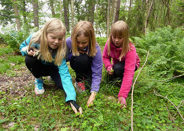 дети в лесу на прогулке
