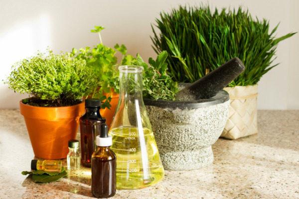 гомеопатия растения