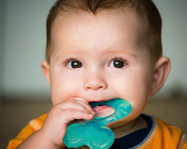 ребенок грызет зубогрызку